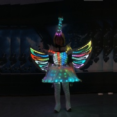 Fairy Princess Luminous Costume with Wings