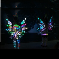 Fabulous LED Prom Butterfly Dress Costume